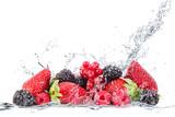 frutti di bosco splash