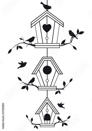 Poster Birds in cages birdhouses with tree branches, vector