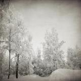 nieczysty zimowy krajobraz - 37077491