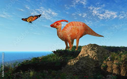Photo 3D - EGN - Cretaceous