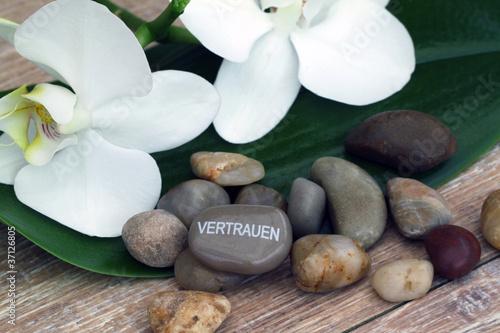 Akustikstoff - Stein mit der Inschrift Vertrauen