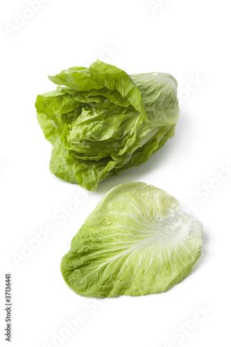 Sugarloaf vegetable Fototapete