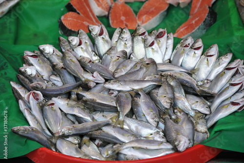 Fotografija  balık