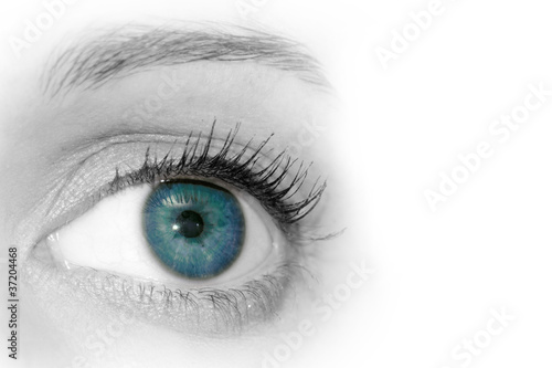 Poster Iris Abstract Blue Eye