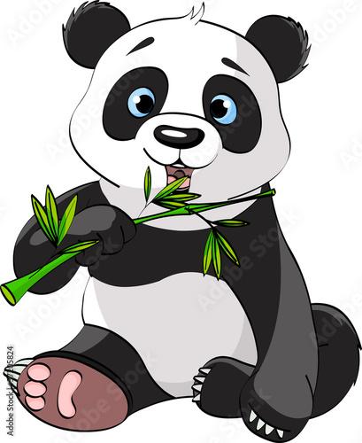 panda-je-bambus