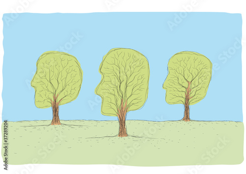 Fotografiet  alberi viso