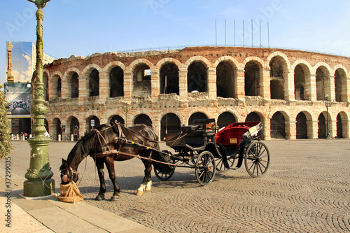 Verona, carrozza davanti all'Arena Wallpaper Mural