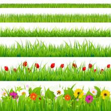 Big Grass And Flower Set