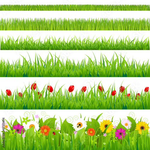 Láminas  Big Grass And Flower Set