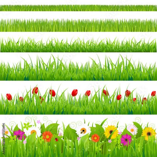 Fotografía  Big Grass And Flower Set