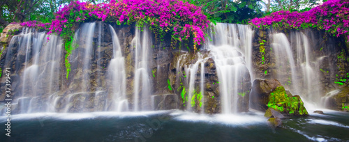 Photo sur Toile Cascade Beautiful Lush Waterfall