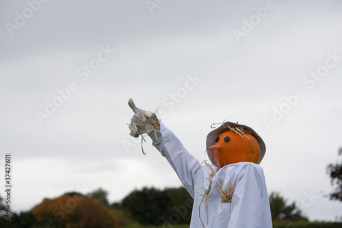 Scarecrow pointing Wallpaper Mural