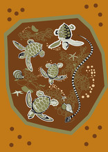 Tortue Serpent Aquatique Animal Pacifique
