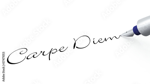 Plissee mit Motiv - Stift Konzept - Carpe Diem