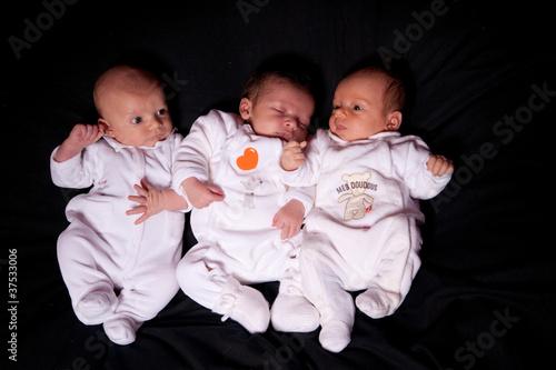 Fotografie, Tablou  3 petits bébés de 3 semaines