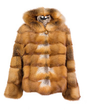 Real Foxy Fur Coat Isolated On...