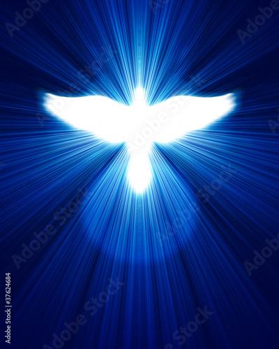 Valokuva  glowing dove against blue rays