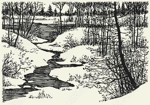Fényképezés Vector winter landscape. The brook in the woods