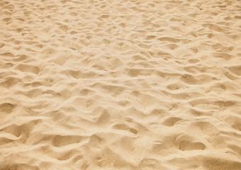 Fototapeta texture of yellow sand on the beach