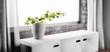 canvas print picture - 3d Pflanze im Topf