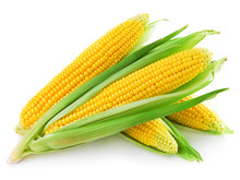 An Ear Of Corn Isolated On A W...