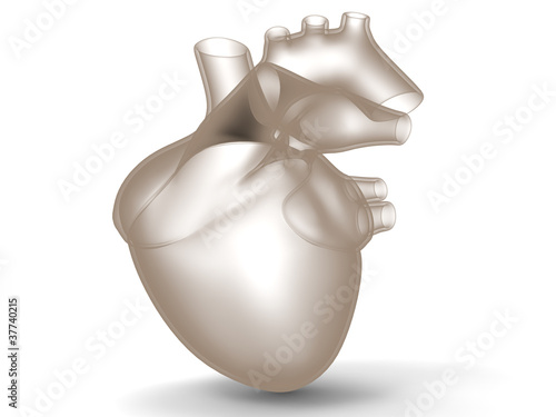 Model of artificial human heart - Buy this stock