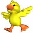 Leinwandbild Motiv Cute Duck