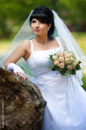 Fotografie, Obraz  beautiful bride near the stone.