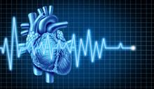 Heart And EKG  ECG Graph
