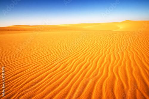 Poster de jardin Desert de sable Desert in Egypt, Africa