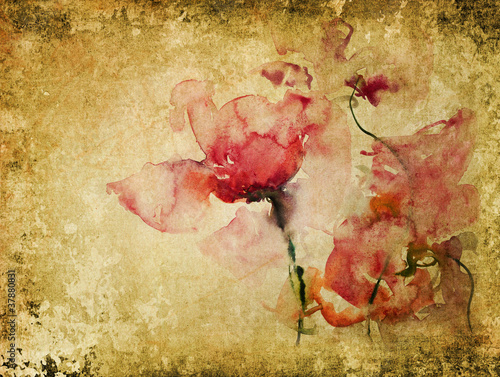 roze-na-tle-pergaminu-starego-papieru-akwarela