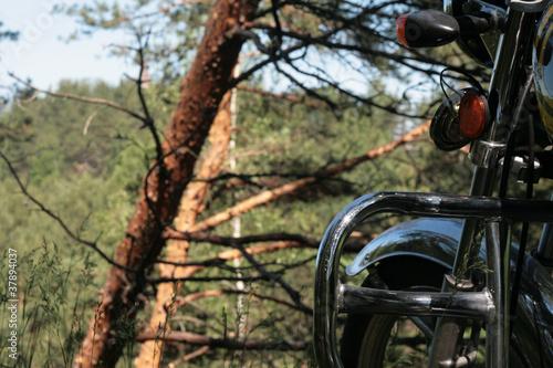 Fotografia, Obraz  moto1