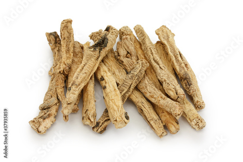 Fotografiet  codonopsis roots, traditional chinese herbal medicine