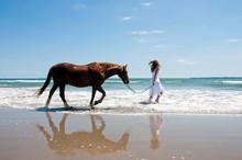 Girl Exercising Horse At The B...