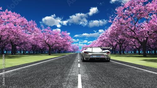 Plakaty samochody nowoczesne   samochod-sportowy-na-pieknej-drodze