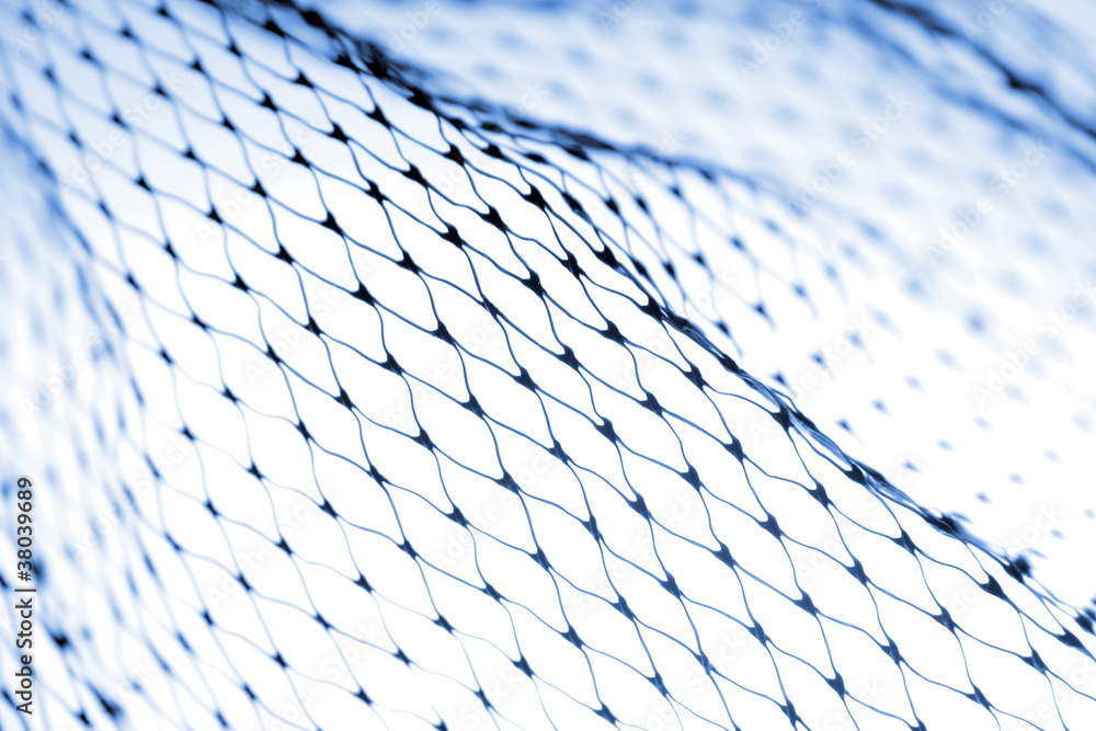 Fototapety, obrazy: Netting