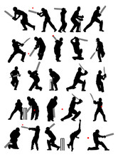 25 Detail Cricket Poses In Sil...