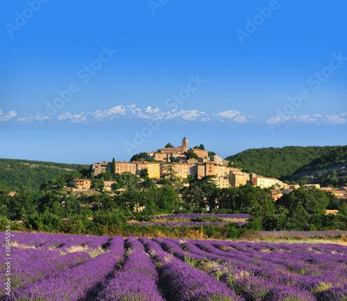 Garden Poster Lavender lavande au pied du village