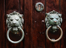 Double Lion Knobs On An Old Wo...