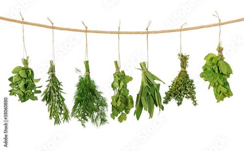 Fototapeta Fresh herbs obraz
