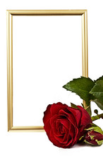 Golden Verticaly Staying Frame Behind The Red Rose