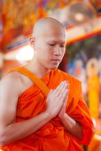 New Monk, Monks Ordination Ceremony