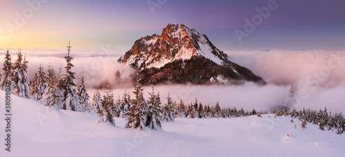 Poster Purple Mountain peak at winter - Roszutec - Slovakia mountain Fatra