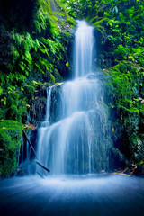 Obraz Beautiful Lush Waterfall