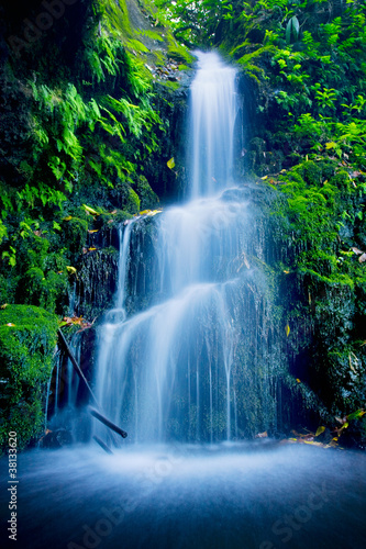 Tuinposter Watervallen Beautiful Lush Waterfall