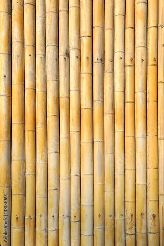 lekki-zloty-bambusowy-tlo