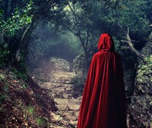 Person Wearing Red Cloak In A Forest.