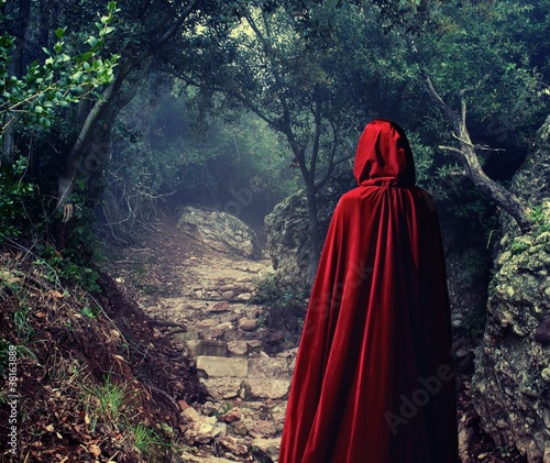 Fotografie, Obraz  Person wearing red cloak in a forest.