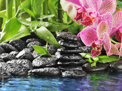 Poster Spa pink orchid