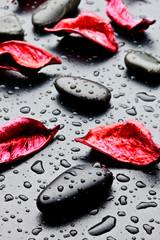 Fototapeta samoprzylepna pietra nera con gocce d'acqua e petali rossi